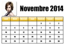 Calendar November 2014 in French