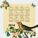 Calendar 2016 natural bird and butterfly