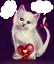 chat blanc avec 1 coeur I LOVE YOU 2 photos