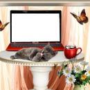 ordinateur avec chat et tasse de café 1 photo